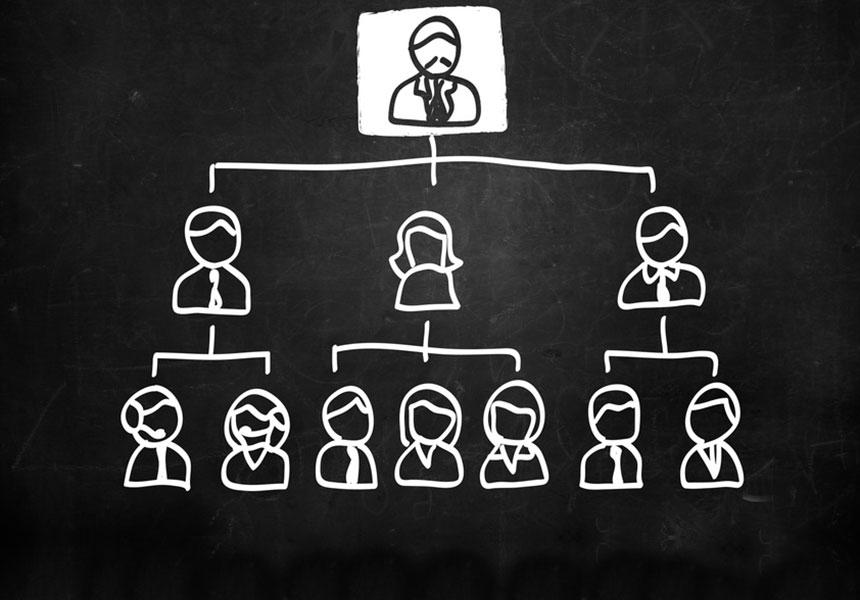 Systemische Beratung Organisation
